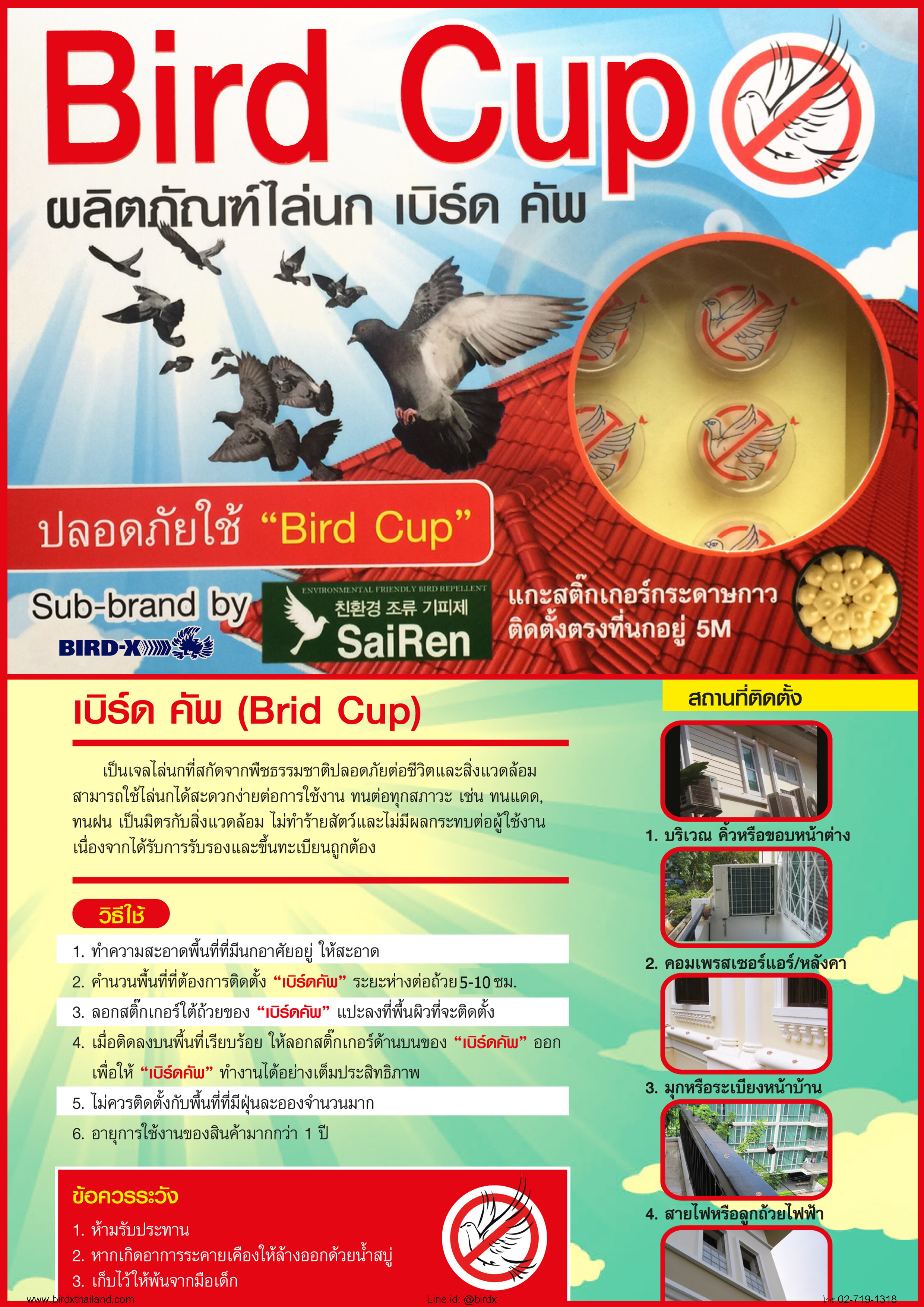 bird-cup-catalog_page_1